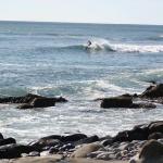 surfing-off-bramble-lane